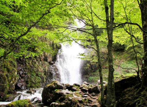 Cascade de Liziou, Pyrénées ariégeoises, France